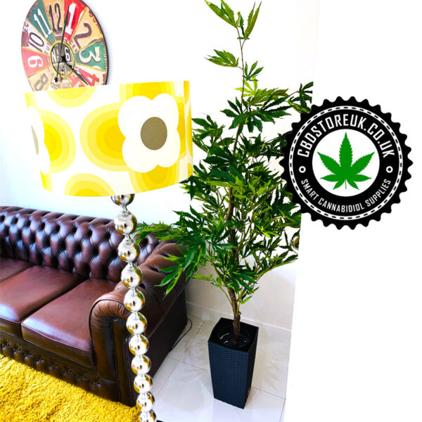 Fake Cannabis Plant | CannaPlant